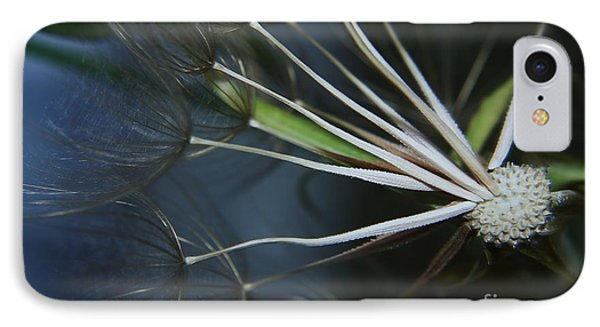 Parachute Seeds  Phone Case by Jeff Swan
