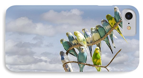 Parakeets Perched On A Limb IPhone Case by Randall Nyhof