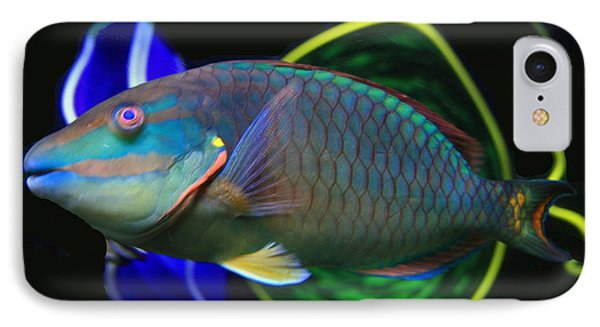 Parrot Fish With Glass Art Phone Case by David Salter