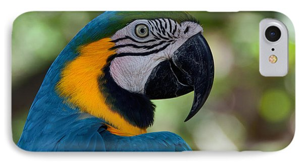 IPhone Case featuring the photograph Parrot Head by Art Whitton