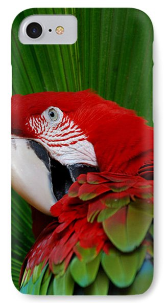 Parrot Head Phone Case by Skip Willits
