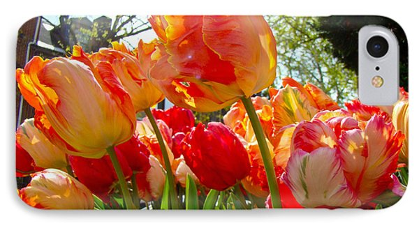 Parrot Tulips In Philadelphia Phone Case by Mother Nature