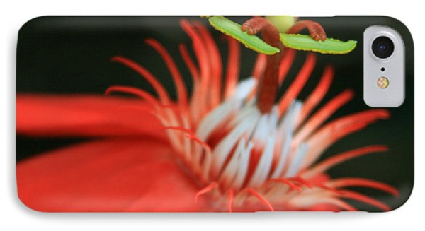 Passiflora Vitifolia - Scarlet Red Passion Flower Phone Case by Sharon Mau