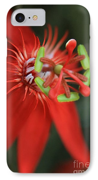 Passiflora Vitifolia Scarlet Red Passion Flower Phone Case by Sharon Mau