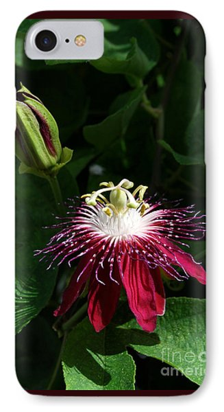 Passion Flower Phone Case by Eva Kaufman