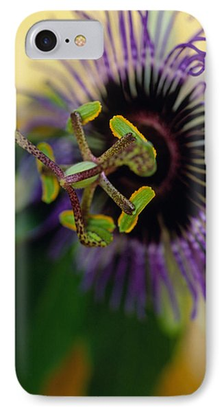 Passionate Flower Phone Case by Kathy Yates