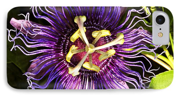 Passionflower Phone Case by David Lee Thompson