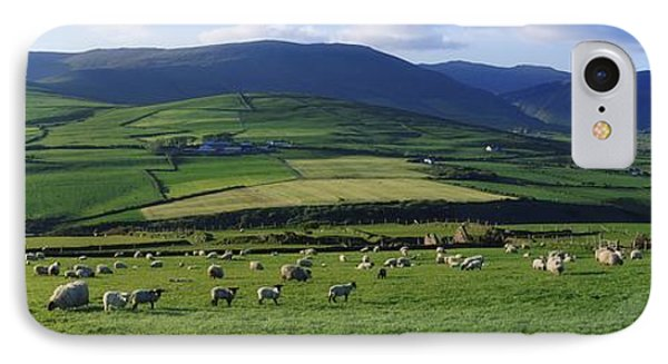 Pastoral Scene Near Anascual, Dingle Phone Case by The Irish Image Collection