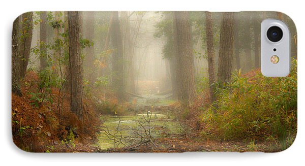 Peaceful Pathway IPhone Case by Jill Smith