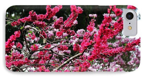 Peach Blossom Phone Case by Kaye Menner