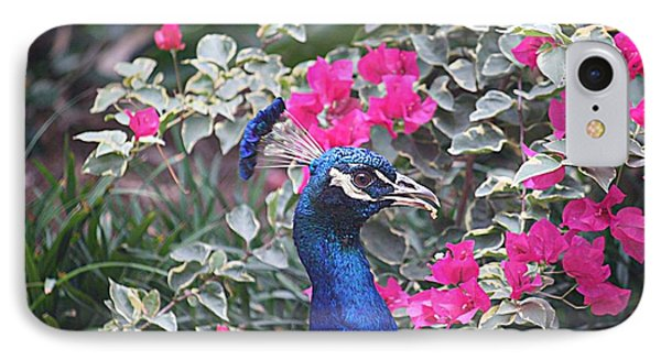 IPhone Case featuring the photograph Peacock And Bouganvillas by Donna Smith