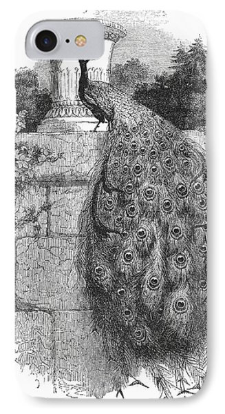 Peacock Phone Case by Granger