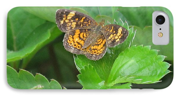 Pearl Crescent Butterfly Phone Case by Randi Shenkman