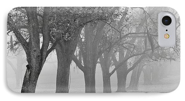 Pecan Grove IPhone Case