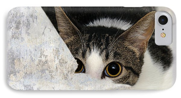 Peek A Boo I See You Too Phone Case by Andee Design