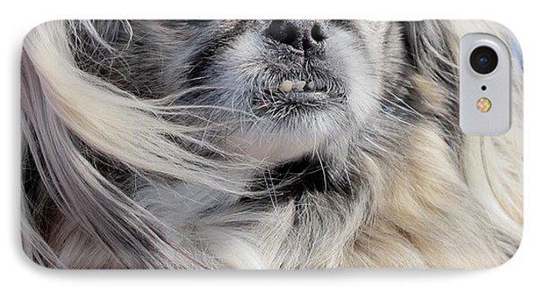Pekingese Portrait  Phone Case by Valia Bradshaw