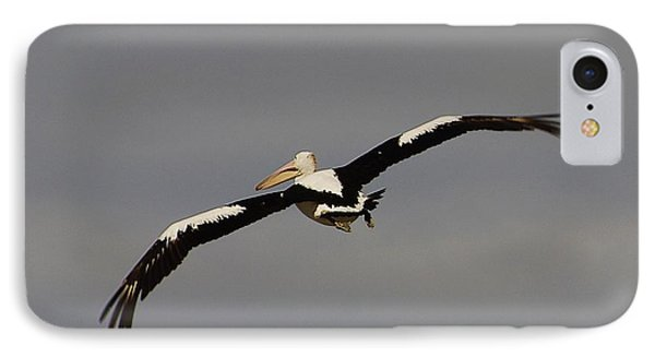 IPhone Case featuring the photograph Pelican In Flight 2 by Blair Stuart