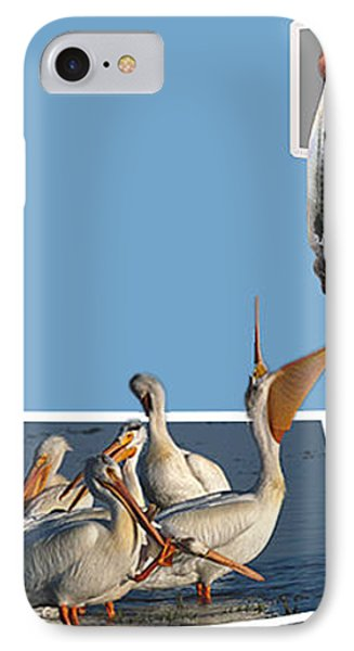 Pelican Lunchtime Phone Case by Anthony Caruso