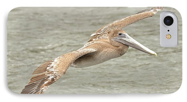 IPhone Case featuring the photograph Pelican On The Water by Rick Frost