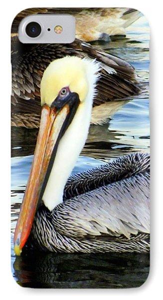 Pelican Pete IPhone Case by Karen Wiles