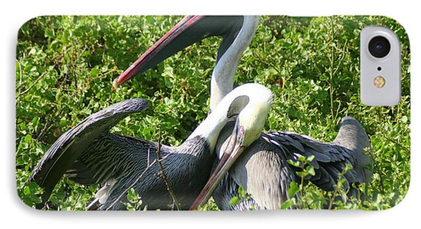 IPhone Case featuring the photograph Pelican Romance by Laurel Talabere