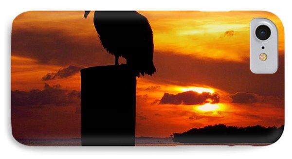 Pelican Sundown Phone Case by Karen Wiles