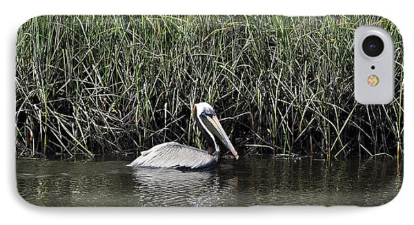 Pelican Swimming IPhone Case by Al Powell Photography USA