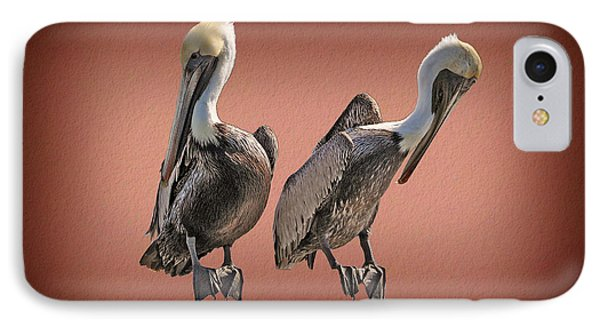 IPhone Case featuring the photograph Pelicans Posing by Dan Friend