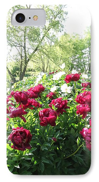 Peony Garden Path IPhone Case by Rebecca Overton