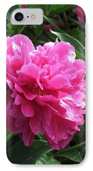 Peony Hot Pink IPhone Case by Rebecca Overton