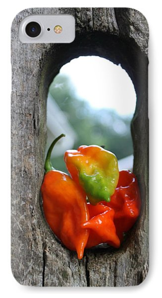 Peppered Fence Phone Case by Lauri Novak