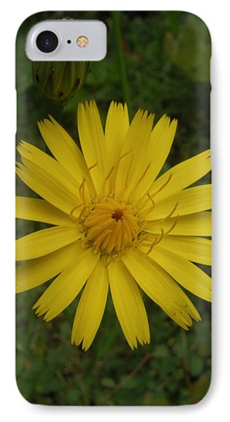IPhone Case featuring the photograph Perfectly Round by Cheryl Perin