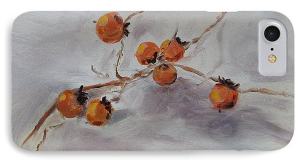 Persimmons IPhone Case by Carol Berning