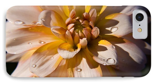 Petal Beauty IPhone Case by Tyra  OBryant