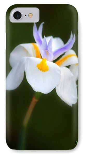 IPhone Case featuring the photograph Petite Flower by Patrick Witz