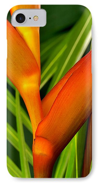 Photograph Of A Parrot Flower Heliconia IPhone Case by Perla Copernik