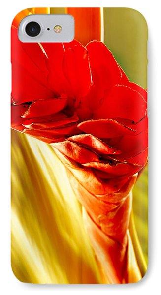 Photograph Of A Red Ginger Flower IPhone Case