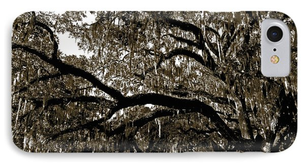 IPhone Case featuring the photograph Picnic Under The Oak by DigiArt Diaries by Vicky B Fuller