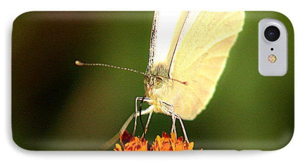 Pieris Brassicae Phone Case by Emanuel Tanjala