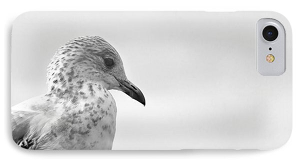 IPhone Case featuring the photograph Pigeon Pride by Nicola Nobile