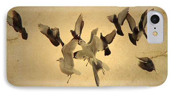 Pigeons And Seagulls  IPhone Case by Gothicrow Images