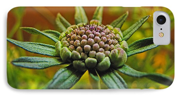 IPhone Case featuring the photograph Pinchshin Bud by Debbie Portwood