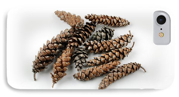 Pine Cones Phone Case by Photo Researchers, Inc.