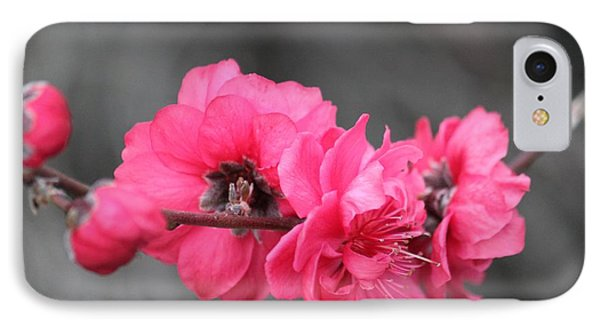 IPhone Case featuring the photograph Pink Blossoms  by Amy Gallagher