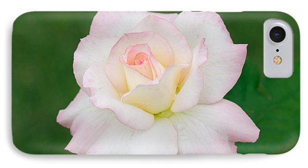 Pink Edge White Rose Phone Case by Atiketta Sangasaeng