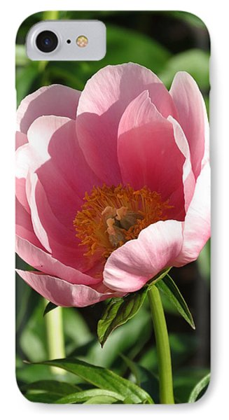 Pink Floral IPhone Case by Rebecca Overton