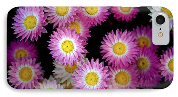 Pink Flowers At Dawn 3 Phone Case by Sumit Mehndiratta
