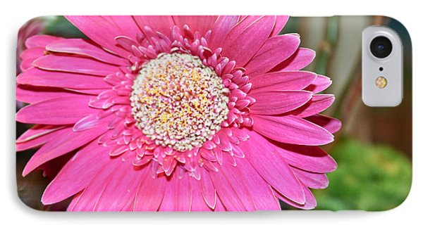 IPhone Case featuring the photograph Pink Gerbera Daisy by Ann Murphy