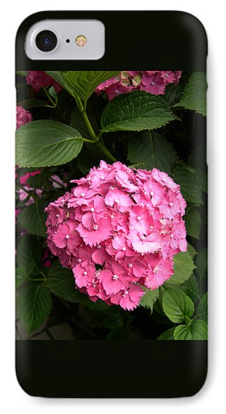 IPhone Case featuring the digital art Pink Hydranga by Claude McCoy