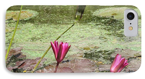 Pink Lilly Pond Phone Case by Rosie Brown